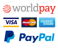 pay with card and paypal