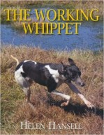 the-working-whippet